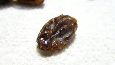 Dry grape - mindfulness