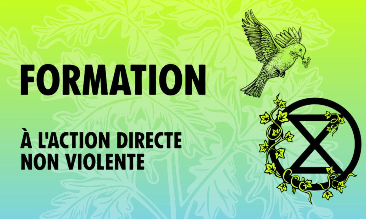 Formation à l'action directe non violente